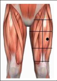 body spieren